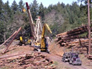 Forestry: Oregon Association of Loggers