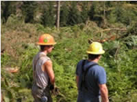 Association Oregon Loggers: Laying Out the Tasks at Hand