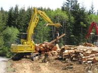 Logging machine image